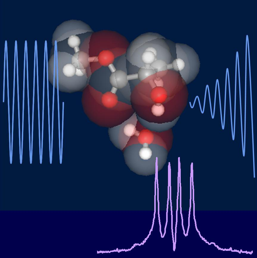 Studies on the structure and dynamical behavior of the bio-related moleculer complexes by high-resolution spectroscopy