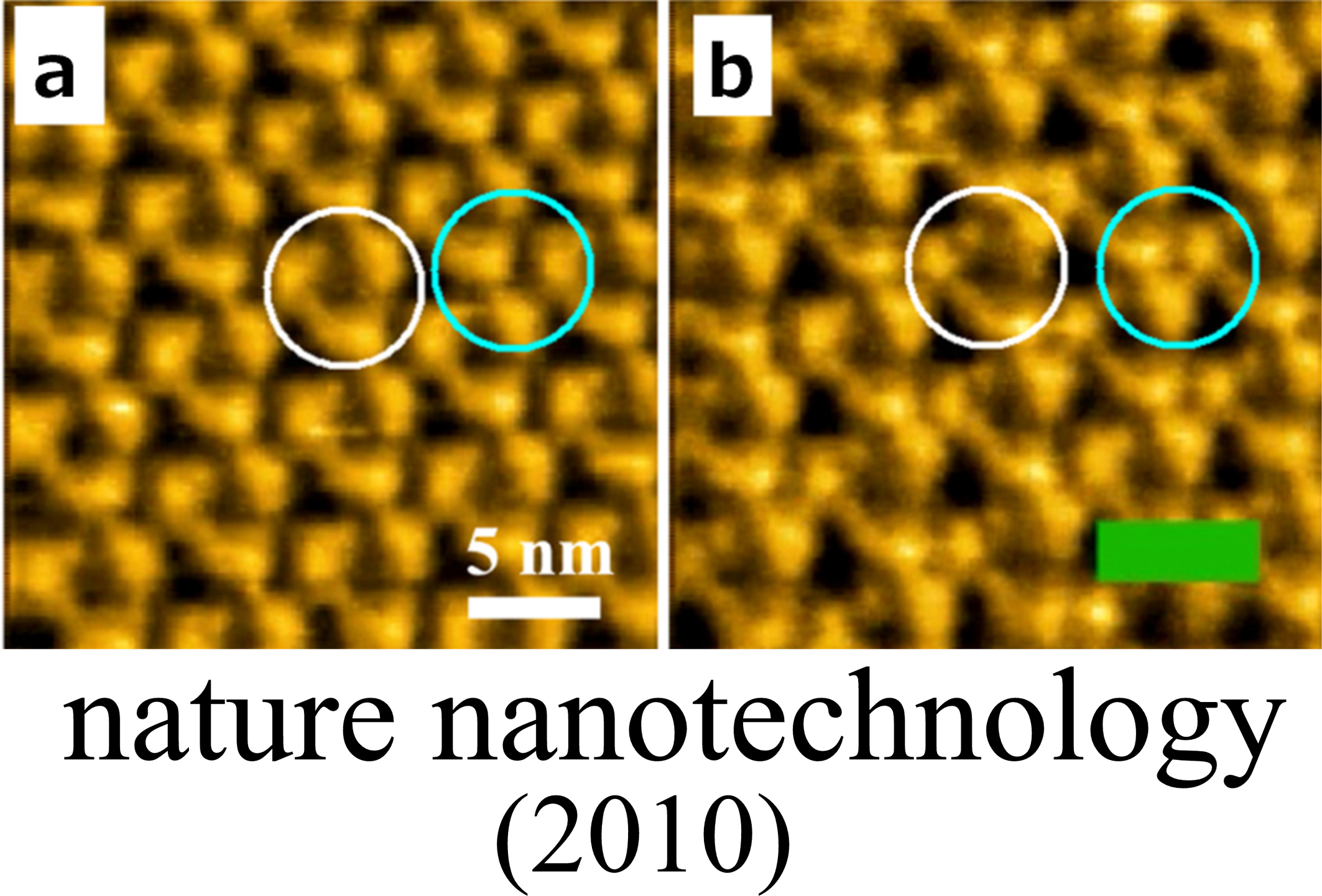 Development and Biological Application of High-speed Atomic Force Microscopy
